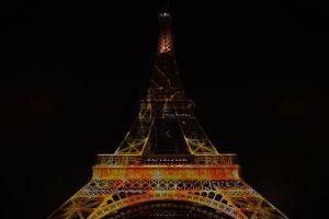 Tour Eiffel impregnée du soleil #1heart1tree #cop21 [2015]