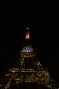 Tour Eiffel en feu #1heart1tree #cop21 [2015]