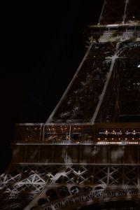 Tour Eiffel #1heart1tree #cop21 [2015]